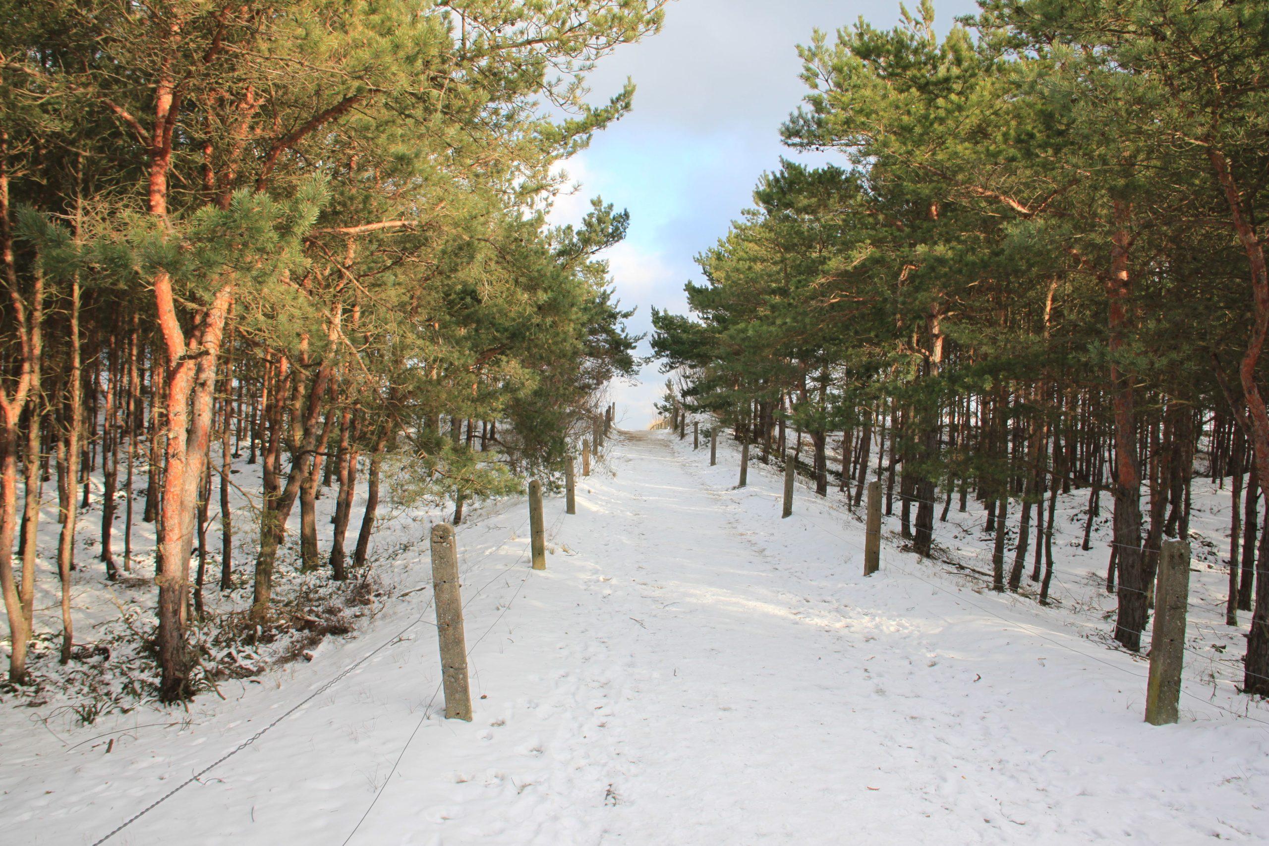 Rodzinne ferie zimowe nad morzem. Czy warto i jak się przygotować do wyjazdu nad Bałtyk zimą?